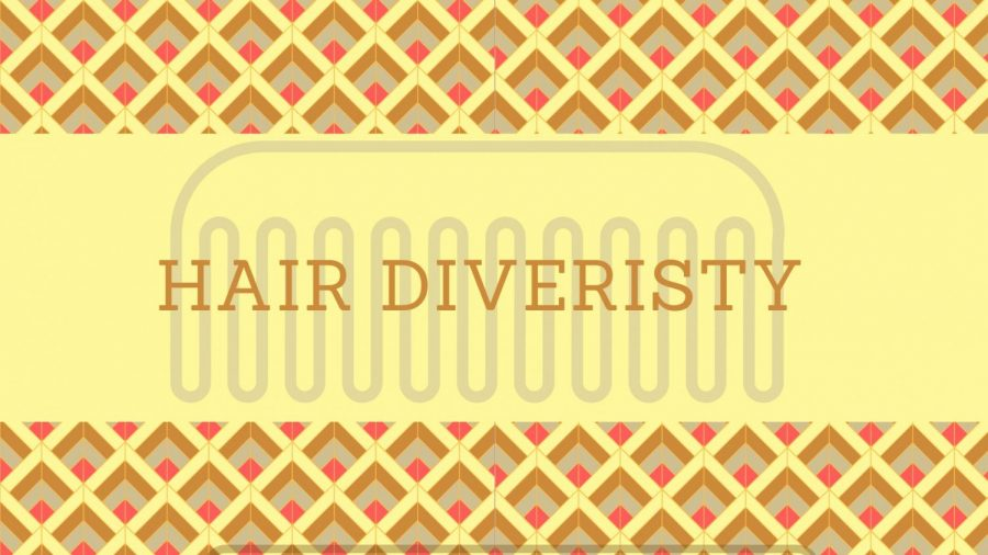 Diversity: The Hair Perspective