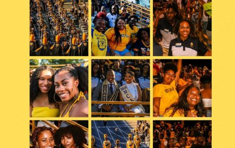 Students share their experiences of GHOE 2019
