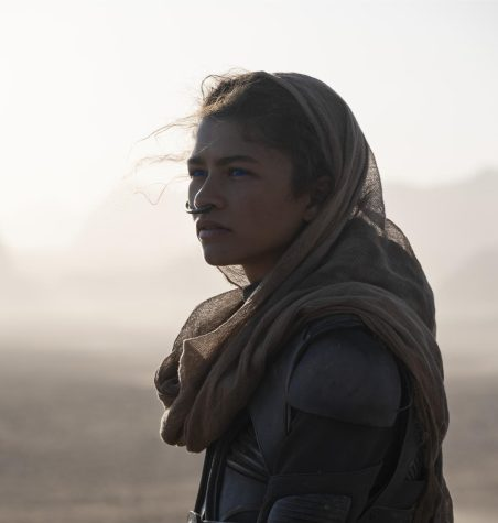 """ZENDAYA as Chani in Warner Bros. Pictures and Legendary Pictures' action adventure """"DUNE,"""" a Warner Bros. Pictures release. © 2020 Warner Bros. Entertainment Inc. All Rights Reserved."""